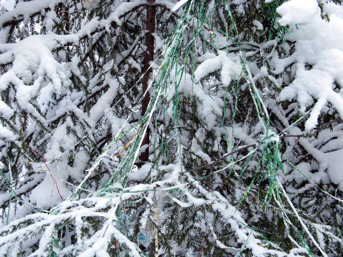 Новогодняя ёлка в лесу