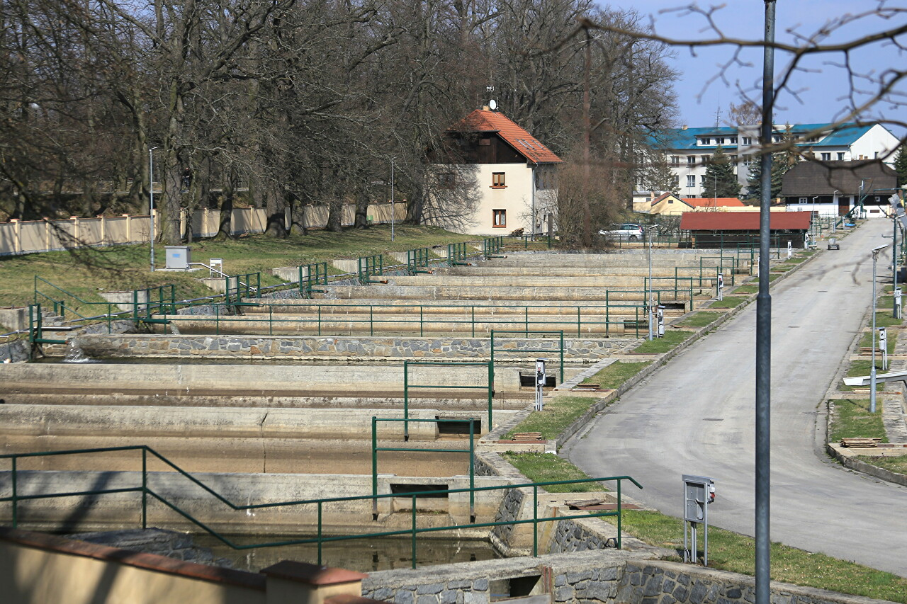 Třeboň Fish Farm