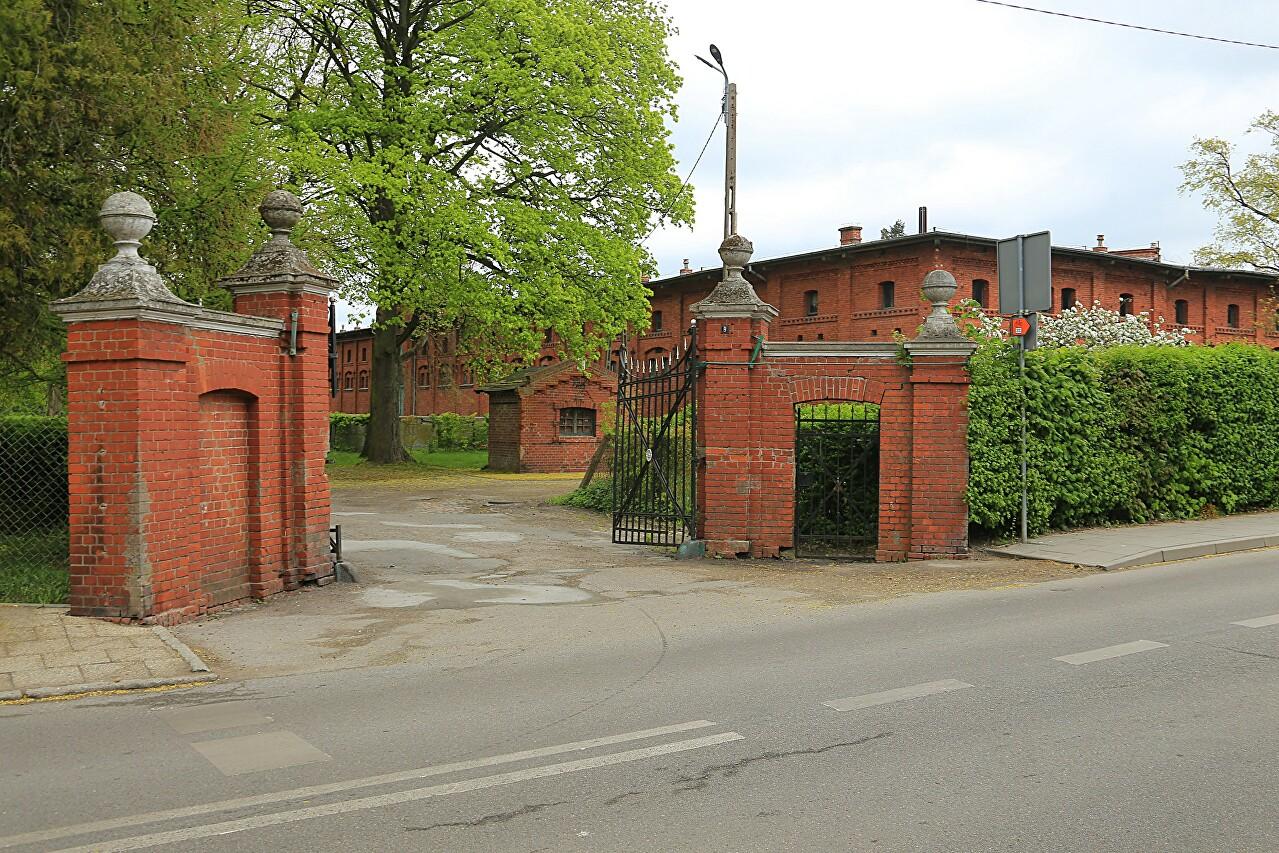 Stud farm, Braniewo