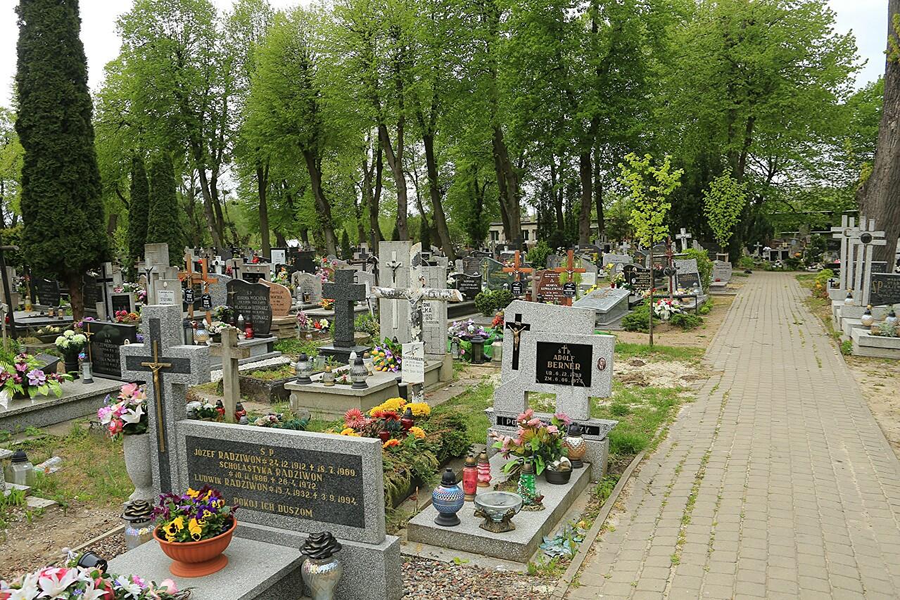 Old cemetery, Braniewo