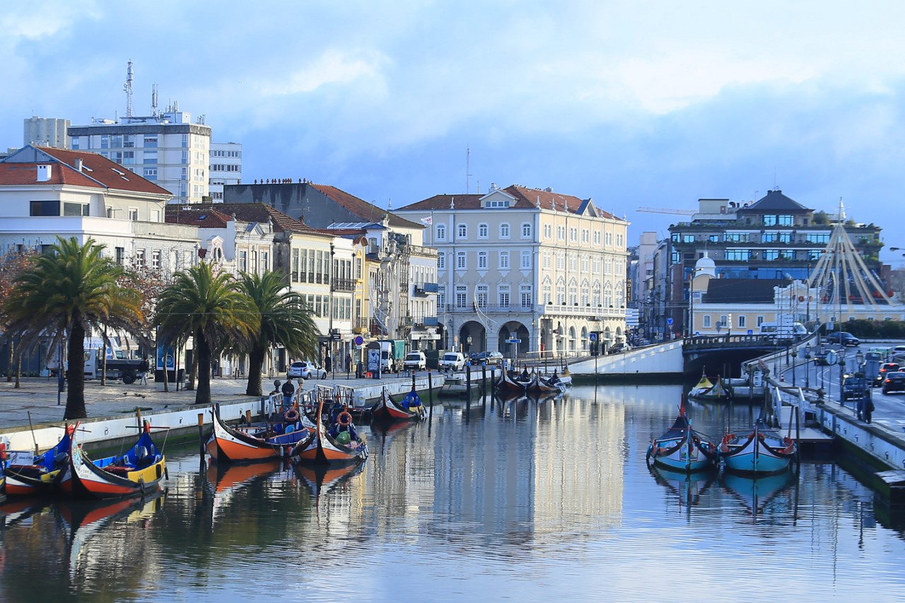 Autumn Morning on the Сanals of Aveiro